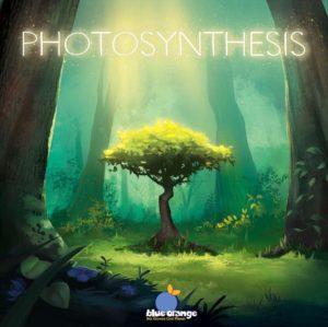 Photosynthese - Im Frühling den Wald entdecken